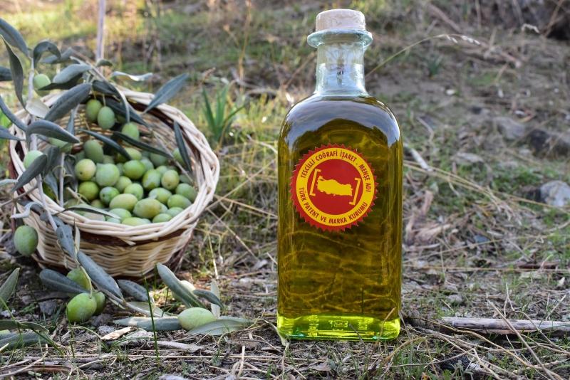 Aydin Memecik Olive Oil