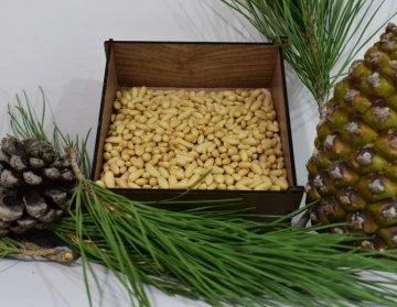 Aydin Pine Nuts