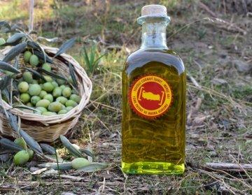 Aydin Olive Oil